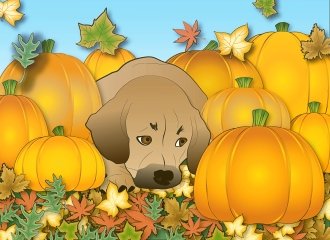 October 2013 - Puggle in the Pumpkin Patch